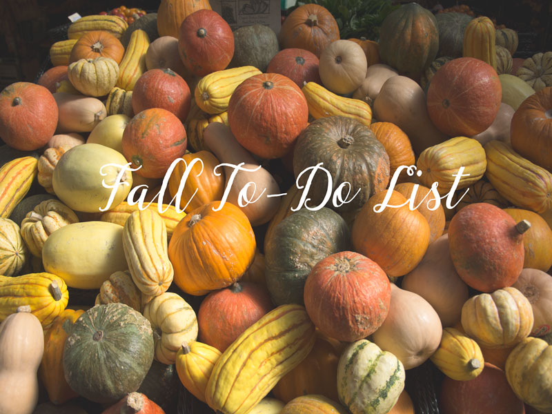Fall To-Do LIst